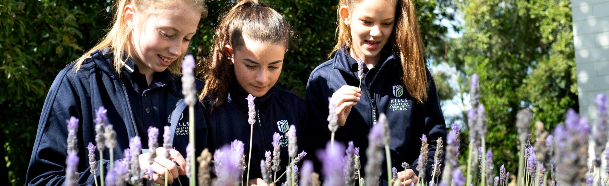 Hills School Verdun Learning Prospectus